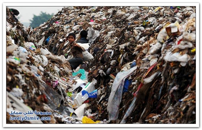 صور اليوم العالمي للأرض 2010