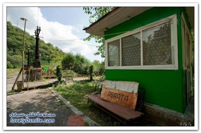 صور تمساح في ورطة + منتجع غاغرا في أبخازيا + أشكال لمواقد نار