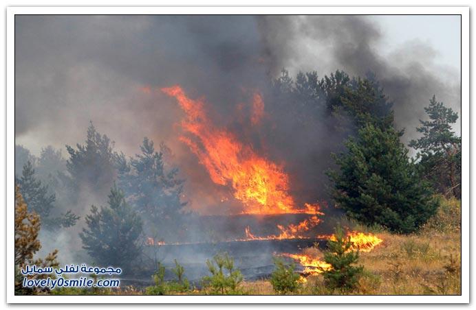 صور من حرائق الغابات في روسيا