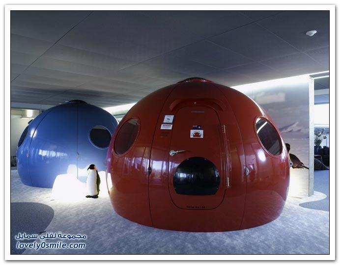 صور من مكتب جوجل في زيوريخ