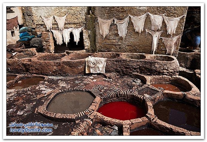 صور طريقة صبغ الجلود في مدينة فاس القديمة