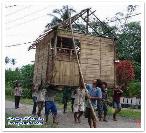 صور لنقل منزل لمكان جديد