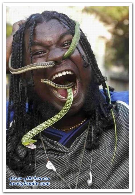 صور الثعابين من الأنف إلى الفم
