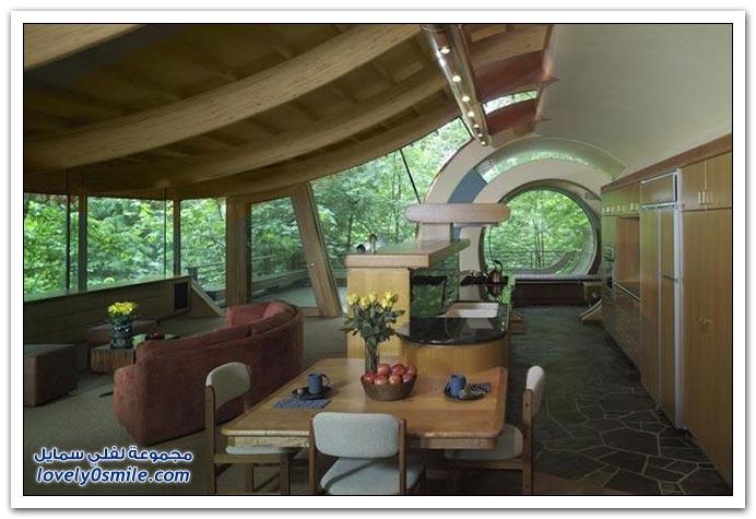 صور لمنزل عجيب في غابات بورتلاند بولاية اوريجون