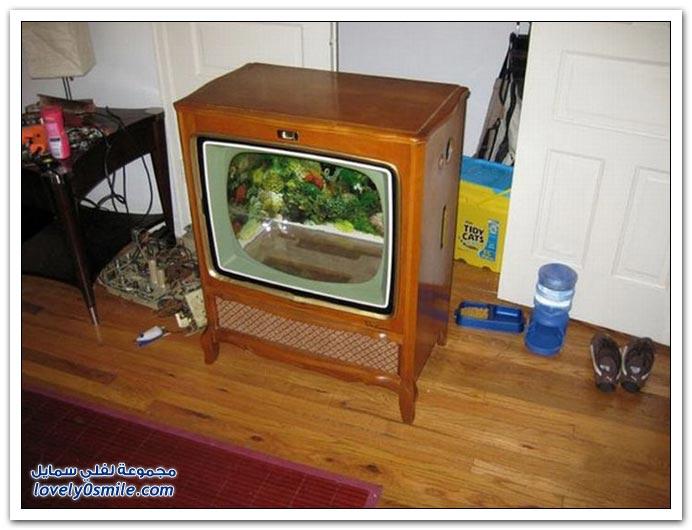 يمكنك جعل التلفزيون القديم حوض سمك