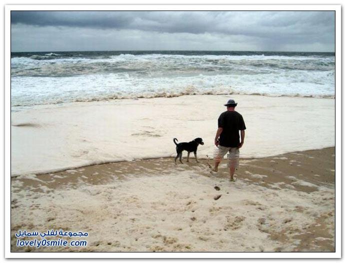 صور رغوة غريبة على أحد سواحل أستراليا