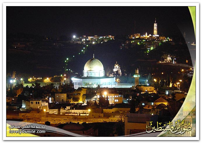 صور من فلسطين 10