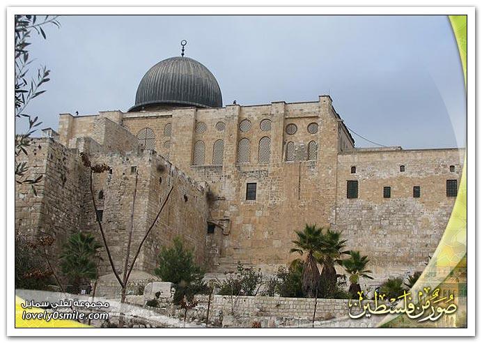 صور من فلسطين 12