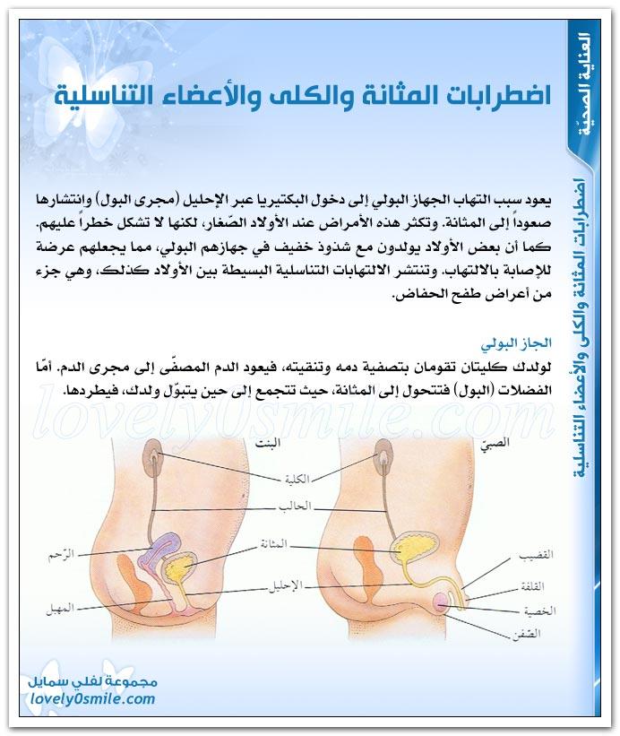 اضطرابات المثانة والكلى والأعضاء التناسلية + التهاب الجهاز البولي