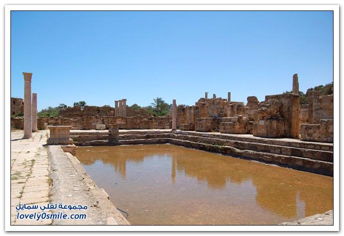 أنـــــــــا عربى ابــــــــــن عربى Libya-07