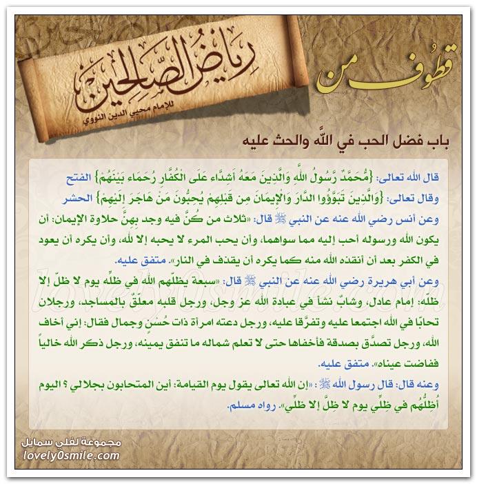 زيارة أهل الخير مجالستهم وصحبتهم ومحبتهم + فضل الحب في الله والحث عليه