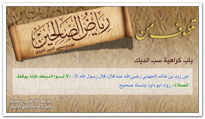 النهي عن الفحش وبذاء اللسان وسب الريح + تحريم تكفير المسلم