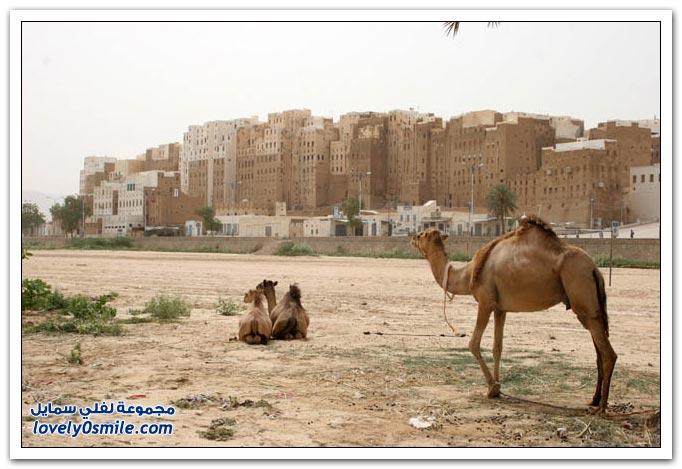 جمهورية اليمن معلومات وصور