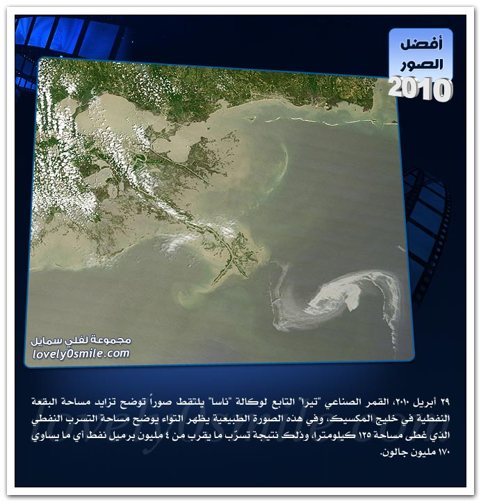 ���� ����� ���� 2010 �1