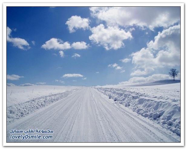 فصل الشتاء