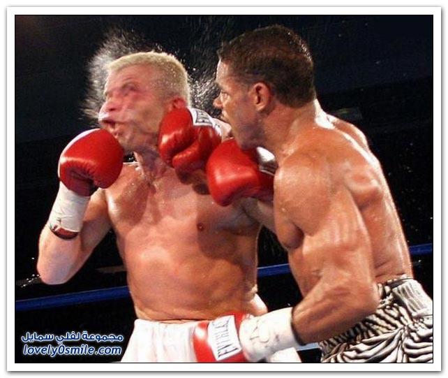 صور من عالم الملاكمة