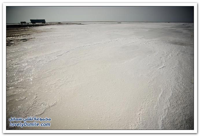 مصنع لاستخراج الملح في كازاخستان
