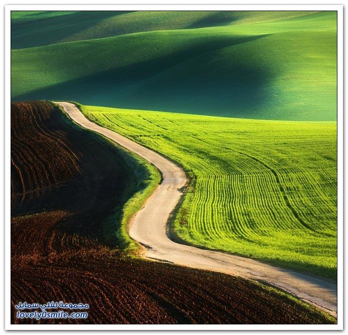 المروج الخضراء في أوروبا