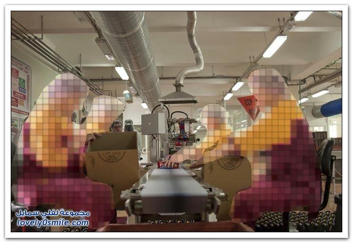 مصنع للحلويات في روسيا