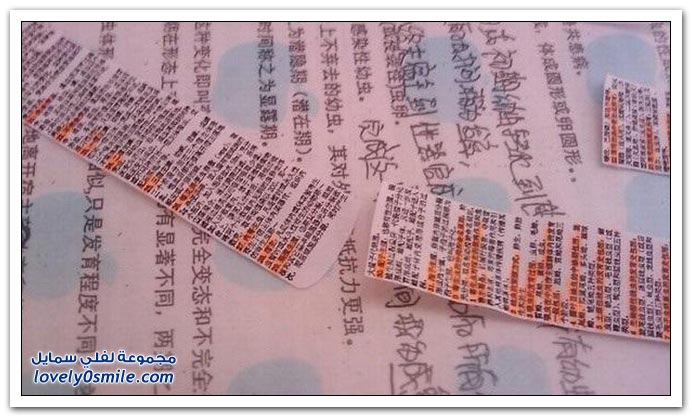 طريقة الغش عند الطلاب الصينيينن