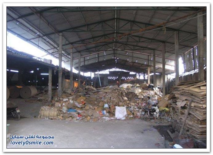 مصنع ورق الحمام في الصين