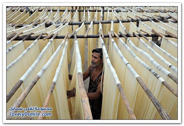 إعداد الشعيرية في الهند