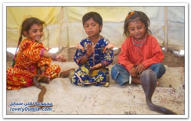 الأطفال أصدقاء الثعابين في الهند