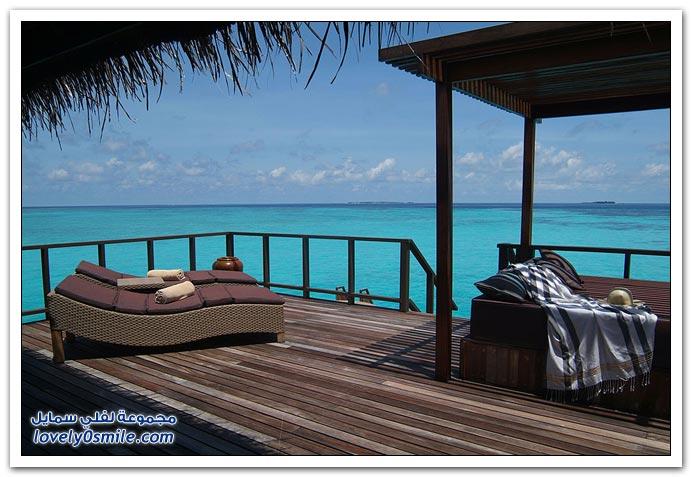 فندق بالم كوكو في المالديف