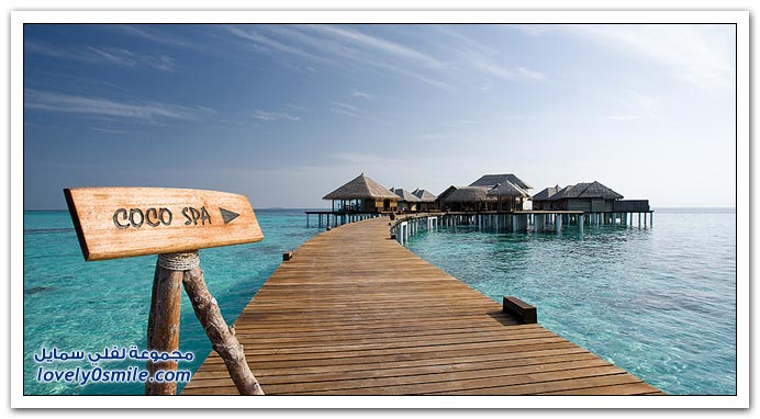 فى جزر المالديف .. فندق بالم كوكو Coco-Palm-Hotel-in-t