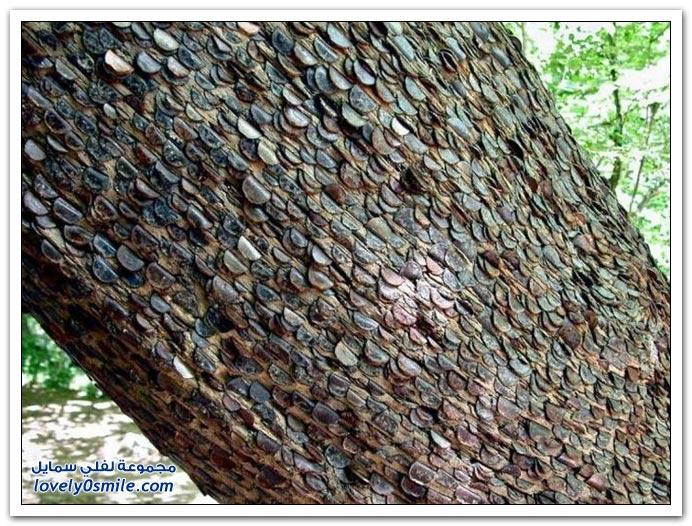 شجرة المال في بريطانيا