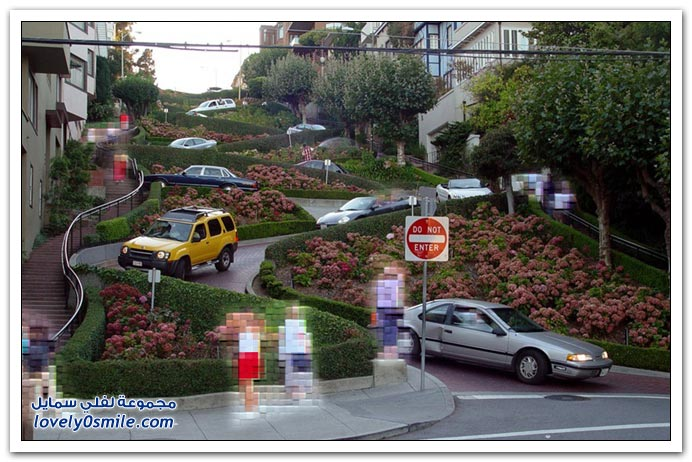 أكثر طرق العالم تعرجاً في سان فرانسيسكو