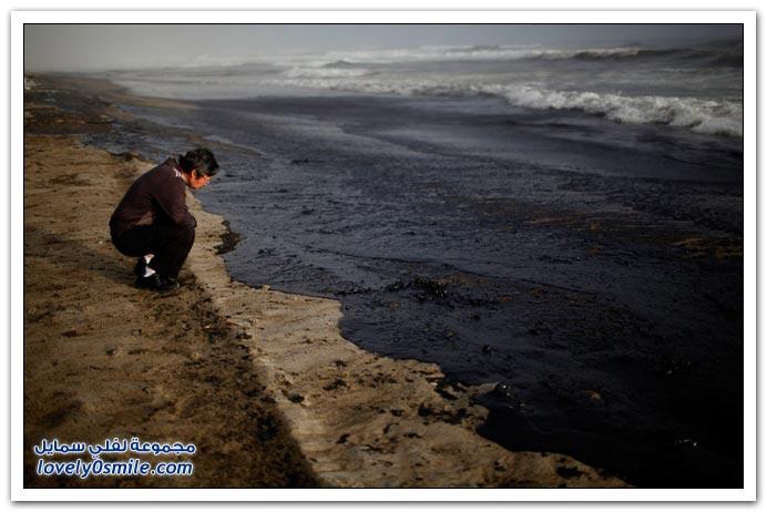 غرق سفينة شحن قرب شاطئ نيوزيلندا