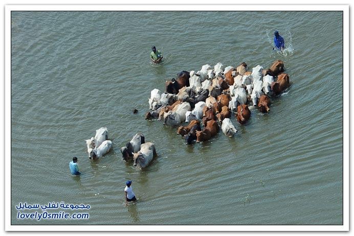 من أسوأ فيضانات تايلاند