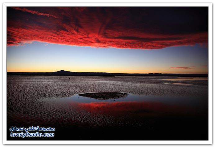 صور من مسابقة التصوير الفوتوغرافي ناشونال جيوغرافيك 2011