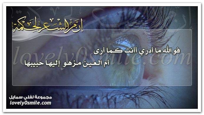 فوالله ما أدري أأنت كما أرى أم العين مزهو إليها حبيبها