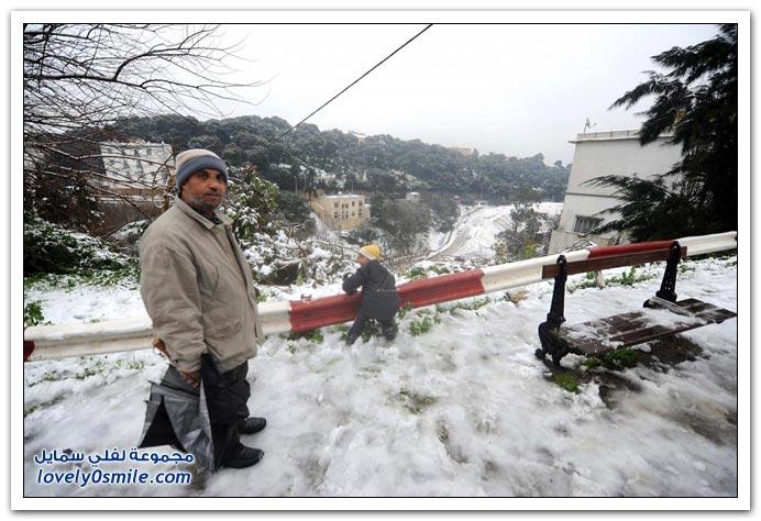 صور من الجزائر وهي مغطاة باللون الأبيض