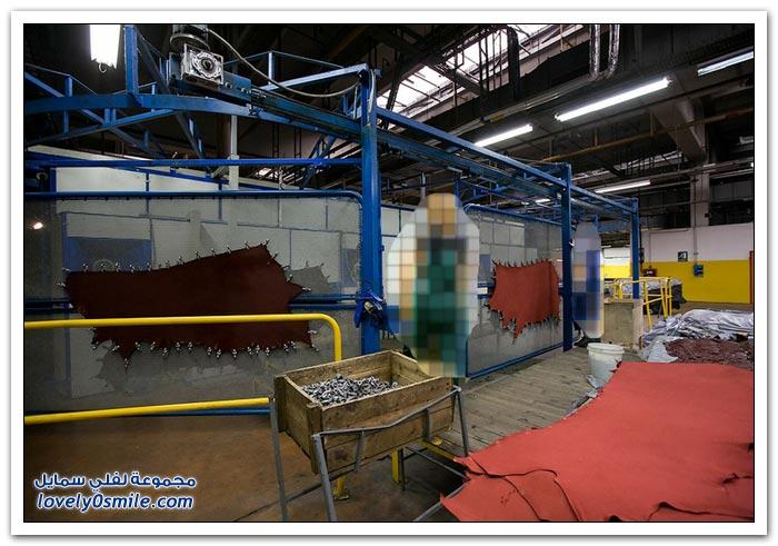 مصنع الجلود في روسيا