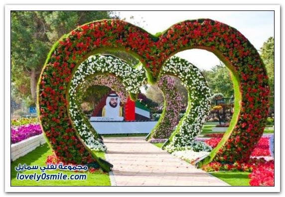 حديقة العين بارادايس في الإمارات التي دخلت موسوعة غينيس Hanging_flowers_01