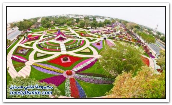 حديقة العين بارادايس في الإمارات التي دخلت موسوعة غينيس Hanging_flowers_02