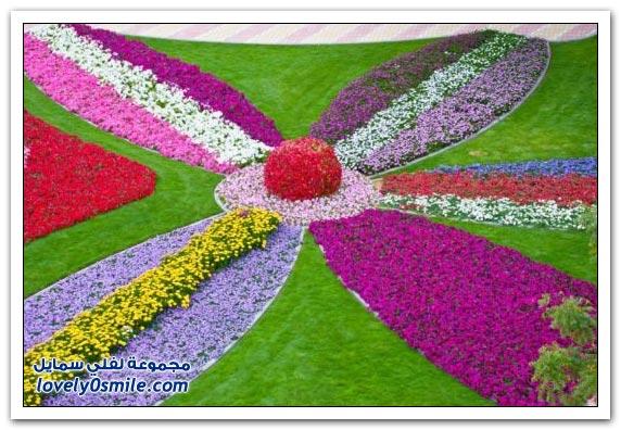 حديقة العين بارادايس في الإمارات التي دخلت موسوعة غينيس Hanging_flowers_05