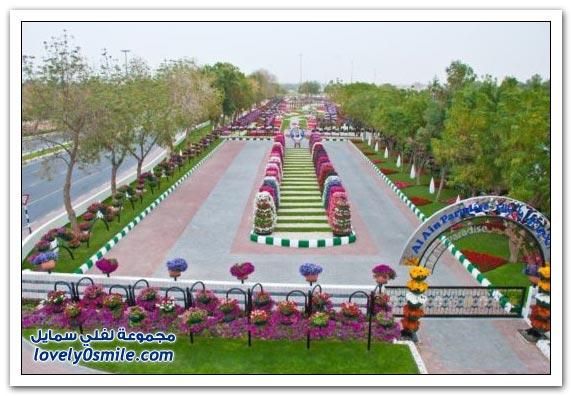 حديقة العين بارادايس في الإمارات التي دخلت موسوعة غينيس Hanging_flowers_07