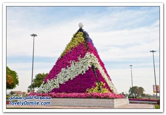حديقة العين بارادايس في الإمارات التي دخلت موسوعة غينيس Hanging_flowers_15