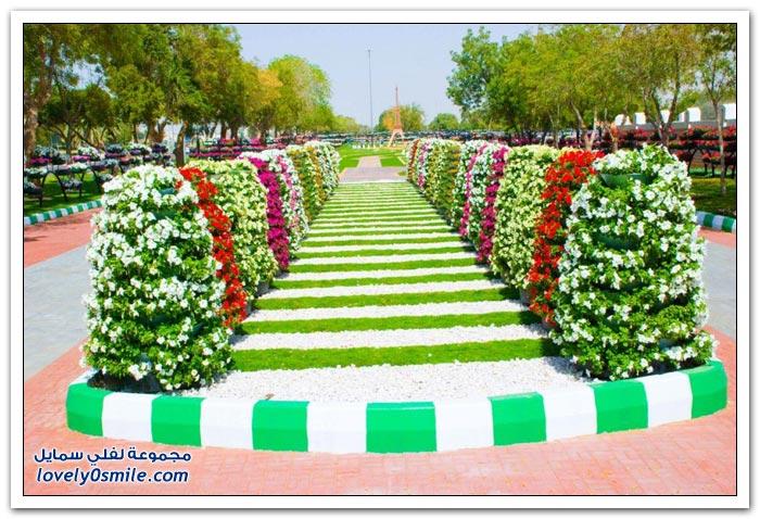 حديقة العين بارادايس في الإمارات التي دخلت موسوعة غينيس Hanging_flowers_19