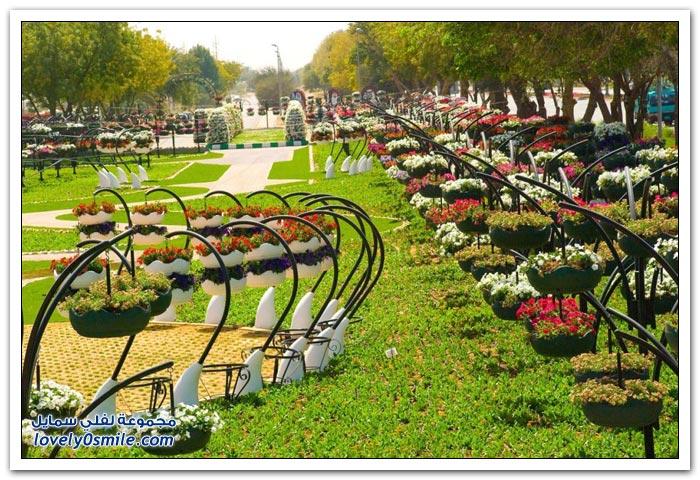 حديقة العين بارادايس في الإمارات التي دخلت موسوعة غينيس Hanging_flowers_20