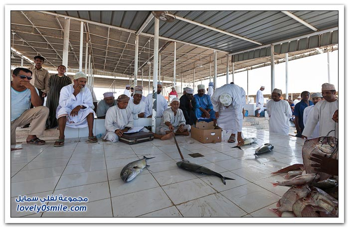 صور من سوق السمك في عمان
