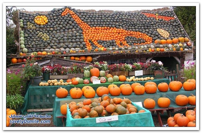 مهرجان القرع والباذنجان في سليندون بإنجلترا