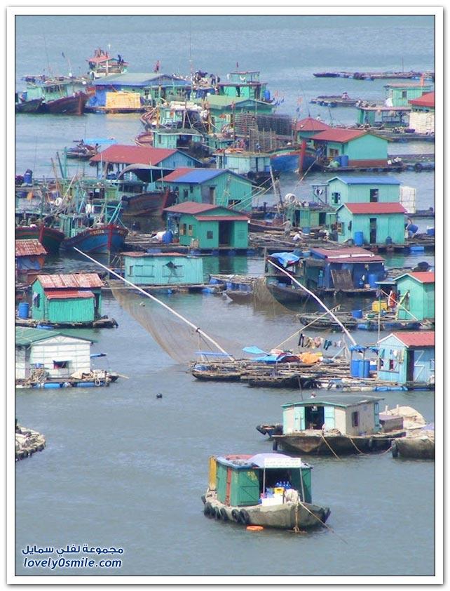 القرية العائمة بالقرب من جزيرة كات في فيتنام