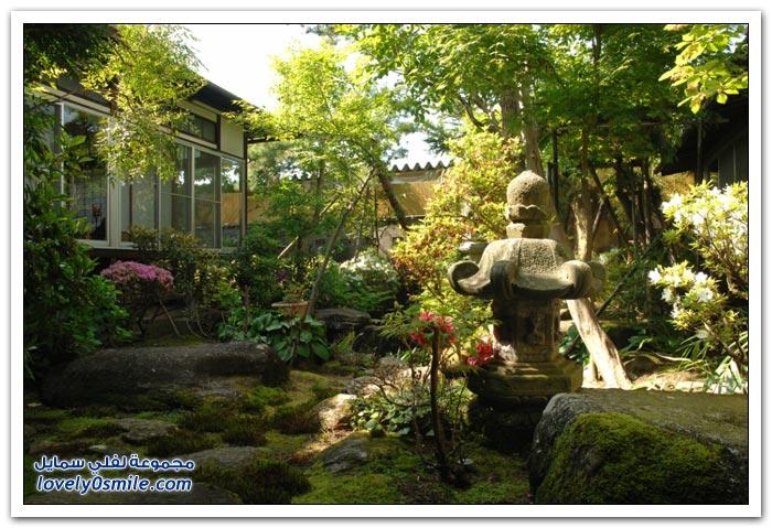 الطبيعة والحدائق الرائعة في اليابان