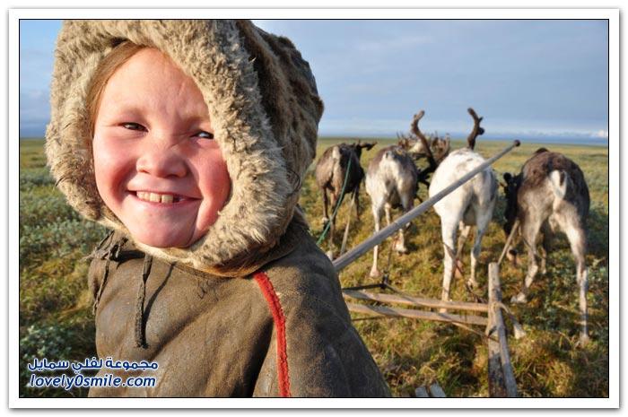 قبيلة النينيتس في روسيا يأكلون اللحم الني ويشربون الدم