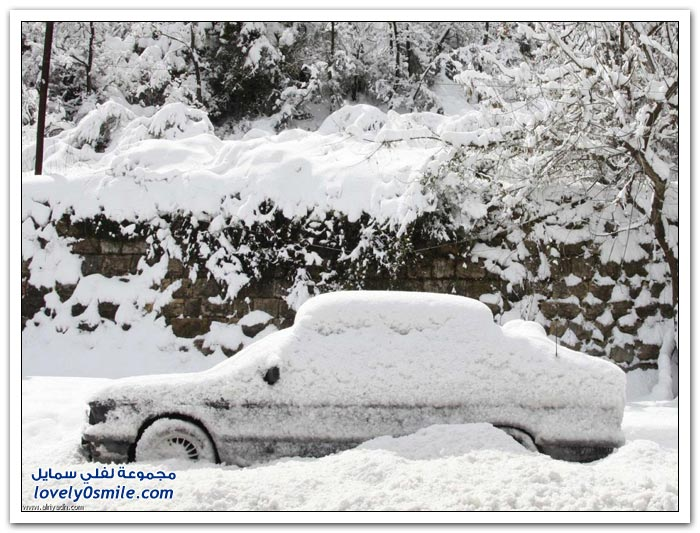 الثلوج تحل ضيفاً على بلاد الشام